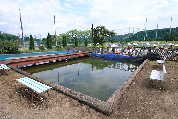 秋川フィッシングセンター金魚池写真