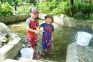 鮎川魚苑夏季つかみどり(HPより)写真