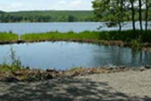 無印良品カンパーニャ嬬恋(バラギ湖)えさ釣り池写真