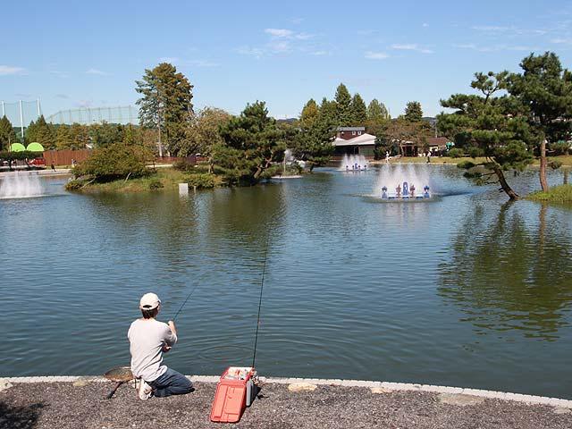 FISH UP!秋川湖画像