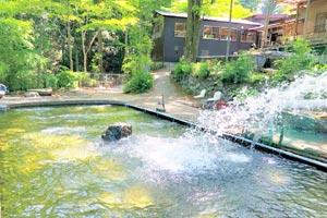 風布にじます釣り堀センターきれいに整備された釣り池です写真