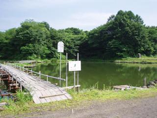 ハイロン湖つり堀画像