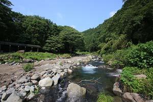 狩川渓谷ます釣り場渓相は様々写真
