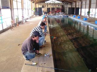 海釣りハウス コリュッシュ海上釣堀・海釣公園画像