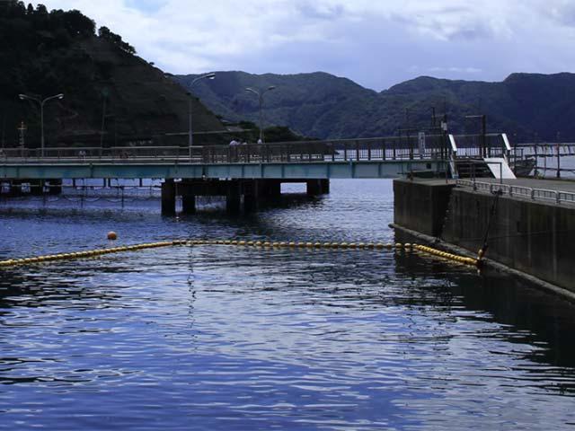 海釣り公園みかた海上釣堀・桟橋画像
