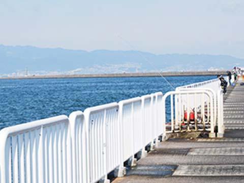 釣果 公園 南港 釣り 大阪南港海釣り公園の魚は食べても大丈夫なのでしょうか?