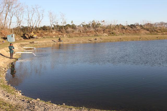 なら山沼漁場北池の北端写真