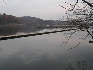 丹生湖へら画像