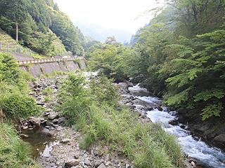 国民宿舎丹沢ホーム札掛渓流釣場画像