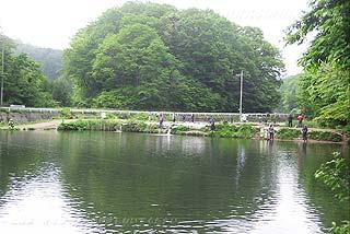 高萩ふれあいの里フィッシングエリア3号池写真
