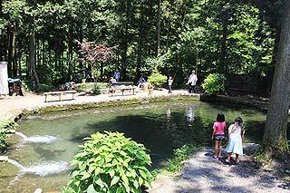 辻野養魚場ニジマス釣り池写真