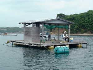 鵜方浜釣センターわかさぎ画像