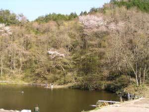 若栗フィッシングの森写真