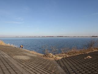 谷中湖へら画像