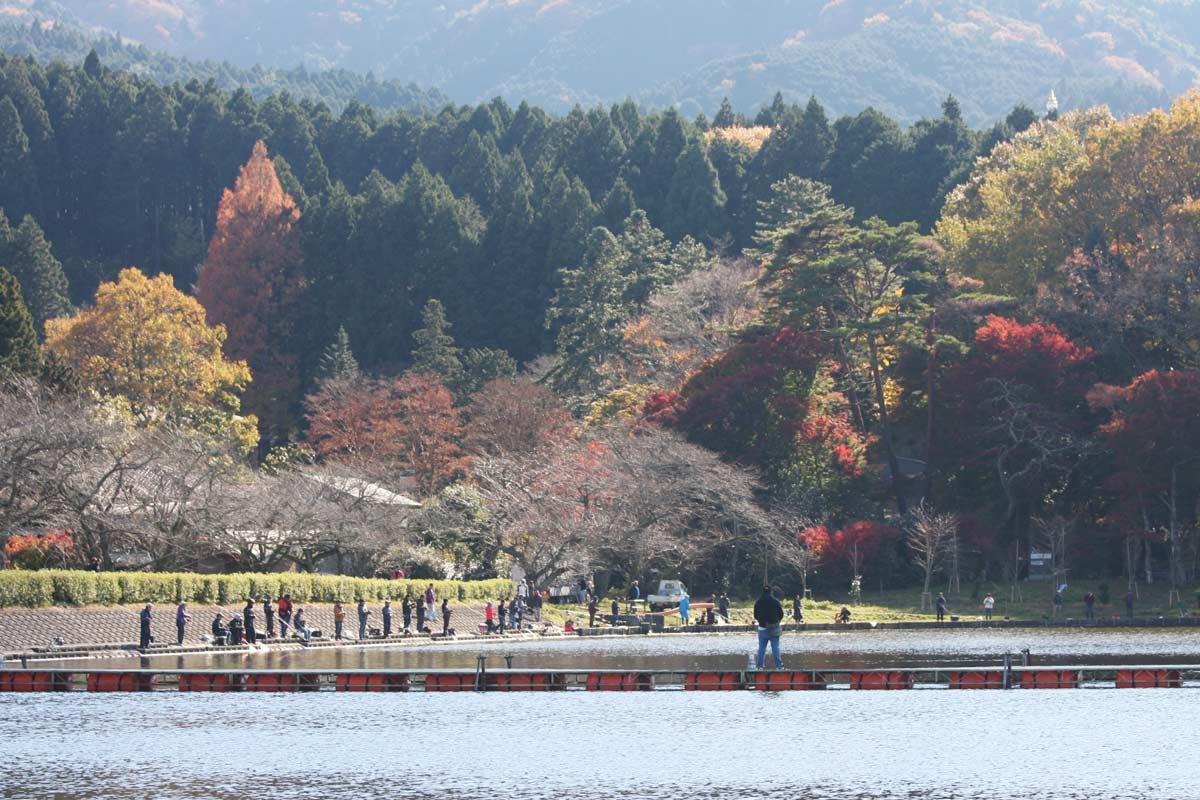 東山湖 静岡
